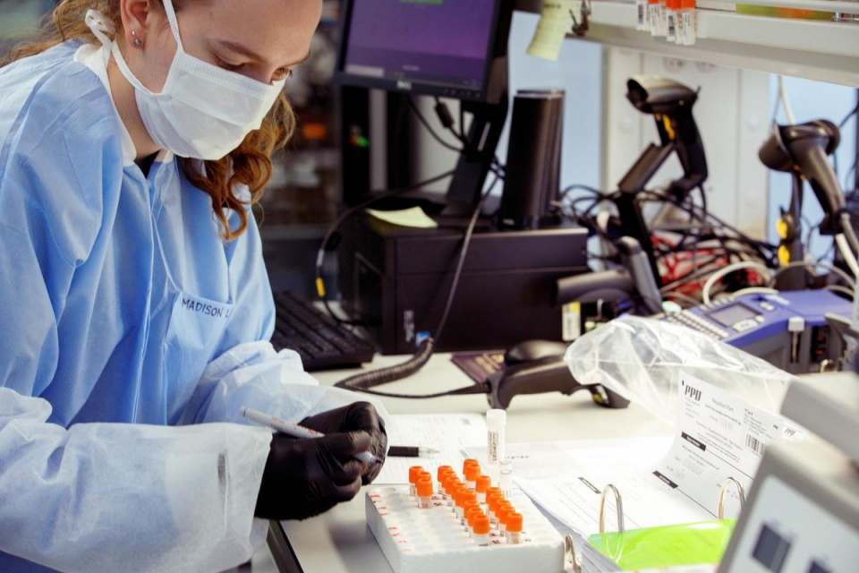 Senior research assistant processes blood samples in the lab.